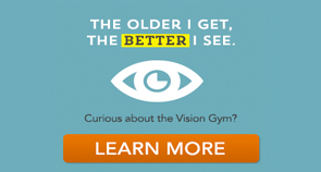 Curious About the Vision Gym?